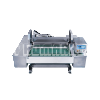 CV-1000 / Continuous Vacuum Packaging Machine